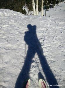 SkiShadow